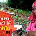 """""""สวนยางพาราถูกต้องตามหลักการสวนป่าทุกประการสามารถพัฒนาเป็นป่าได้ คุณโค่นทำไม…?"""" คำถามจาก พงศา ชูแนม"""