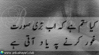 Kya Sitam Hai K Ab Teri Surat..  Gaur Kerne Pay Yaad Ati Hai..!!  #lines #poetry