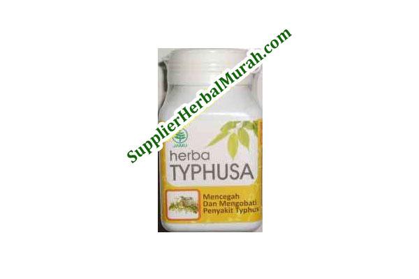Herba Typhusa (Mencegah dan Mengobati Penyakit Typhus)