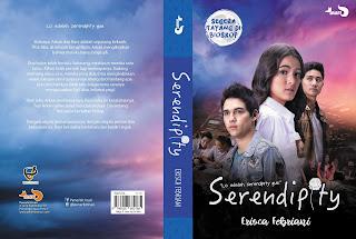 Sinopsis novel serendipity