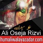 https://www.humaliwalyazadar.com/2018/09/ali-oseja-rizvi-nohay-2019.html
