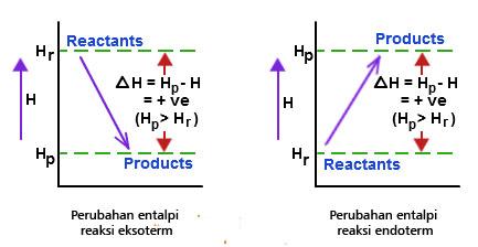 Reaksi eksoterm dan endoterm belajar kimia reaksi eksoterm dan endoterm ccuart Images