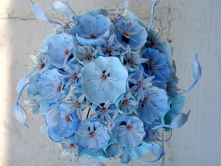 Asfodelo e fiori di carta, un bouquet ecologico , colori turchese acquamarina,