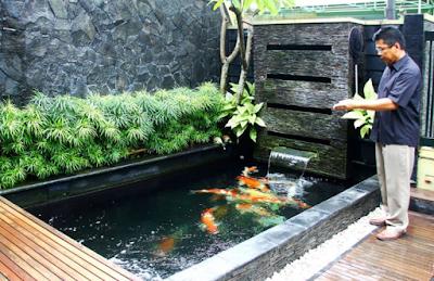 model kolam ikan hias minimalis