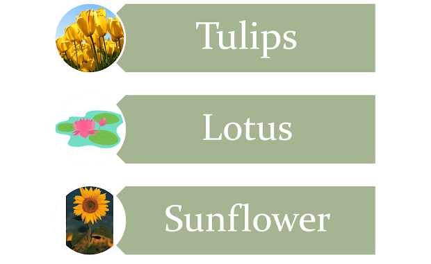 Science Examples Of Soft Stem Plants