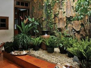 gambar taman minimalis dalam rumah paling segar dan cantik