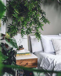 Już teraz zobacz najpiękniejsze sypialnie z roślinami!
