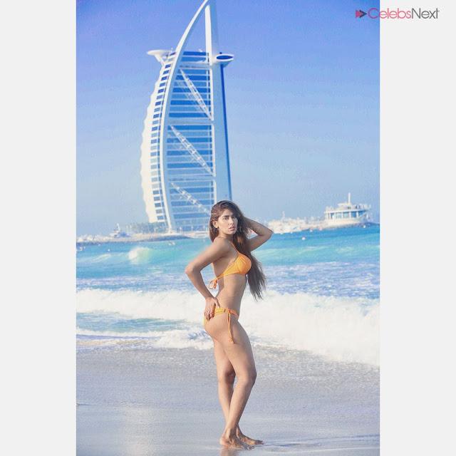 Heena Harwani Spicy Indian Bikini Model   .xyz Exclusive 002.jpg
