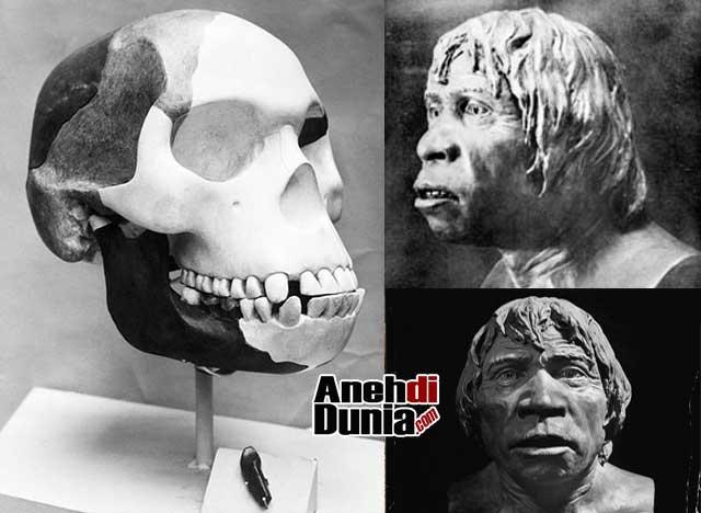 Bukti Bukti Kebohongan Teori Evolusi