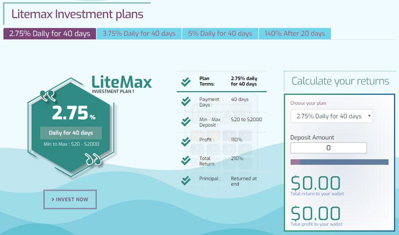 Инвестиционные планы Litemax Limited