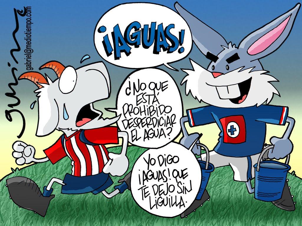Chivo Dibujo Animado: FUTBOL DE TODOS MONOS: Abril 2011
