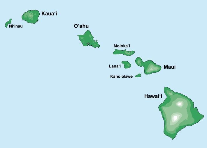 Project Fashion Dream Aloha Feel The Breeze