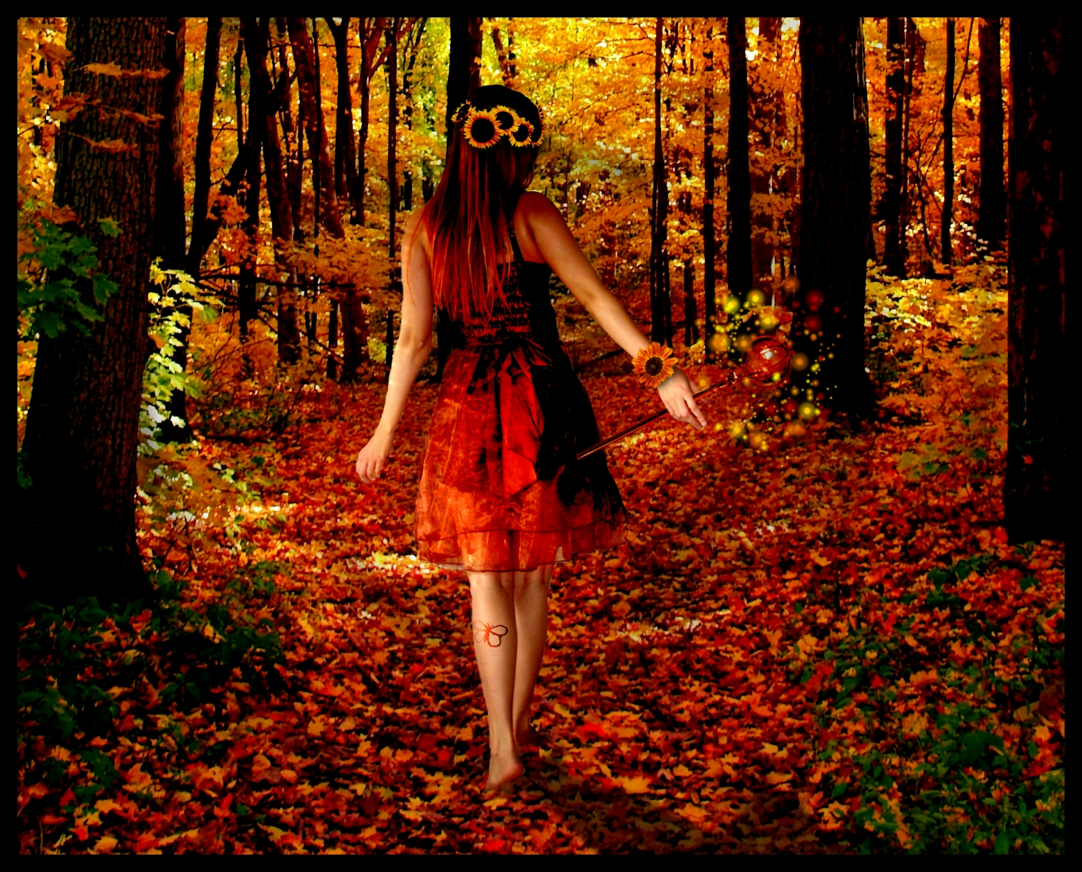 Fall Wooded Wallpaper Autumn Nights Autumn Posters Picture