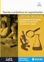 teorías y pràcticas