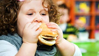 http://www.faythclinic.com/obesity-rehab-program/