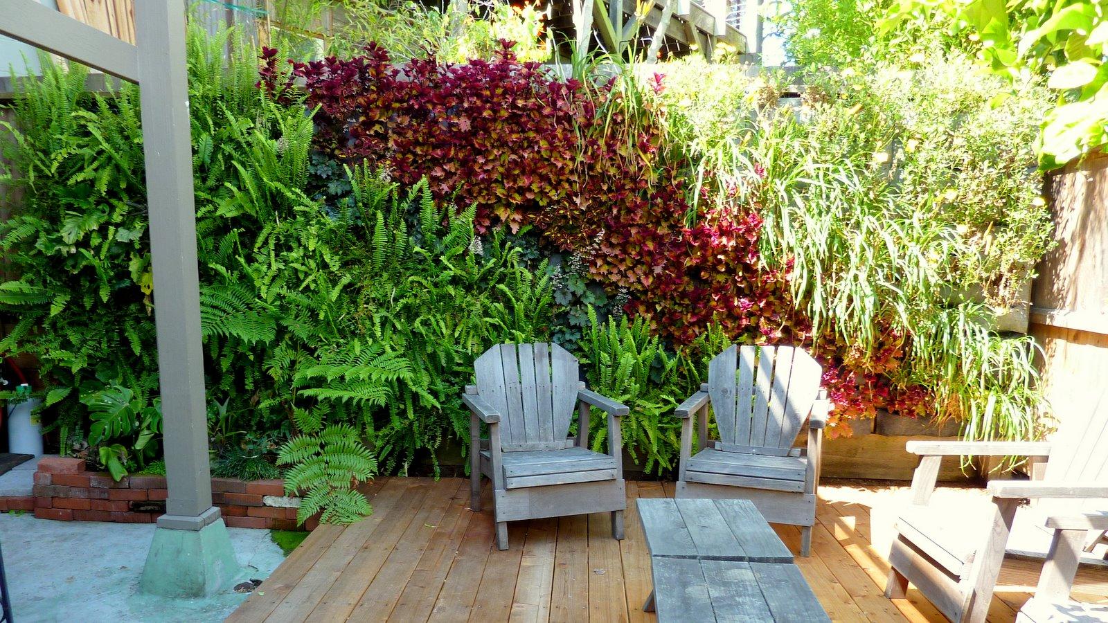 Plants on walls vertical garden systems august 2011 - Jardin vertical en casa ...