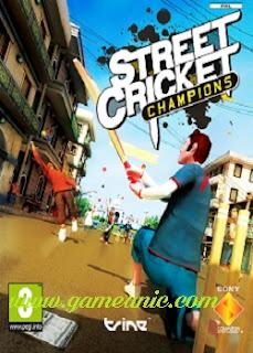 Street Cricket Champion Game