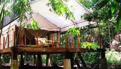 Indo Safari Tent