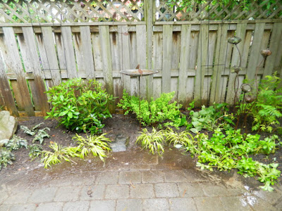 Toronto Cabbagetown shade garden makeover after by Paul Jung Gardening Services