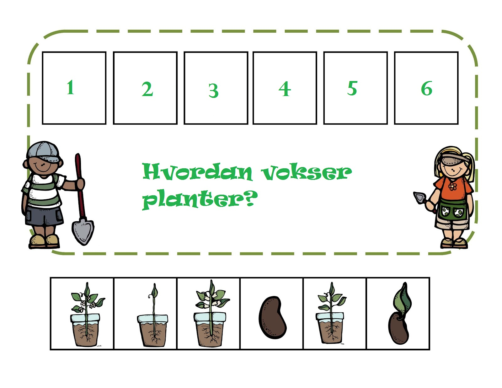 Less Commonly Taught Plant Cycle Sequencing Activity
