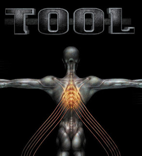 tool 10000 days download 320 -