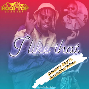 Download Mp3 | Country Boy ft Barakah Da Prince - I Like That