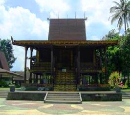 Rumah adat Kalimantan Selatan disebut Rumah Bubungan Tinggi. Bagian depan rumah berfungsi sebagai teras yang dinamakan Pelatar: Rumah ini merupakan rumah panggung dan dibawahnya untuk menyimpan padi dan sebagainya.