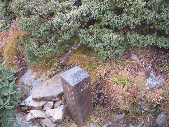 IMG 5965 - 台中登山│台灣第二高峰,雪山主峰、東峰兩天一夜攻頂!這兩天是我最難熬的一夜