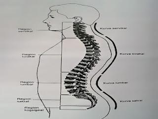 Gambar Gejala Osteokondrosis Dan Cara Mengobati Osteokondrosis