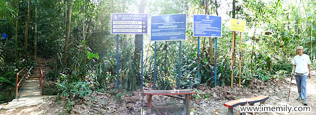 Hiking @ Bukit Gasing, Petaling Jaya (Trail Guide)