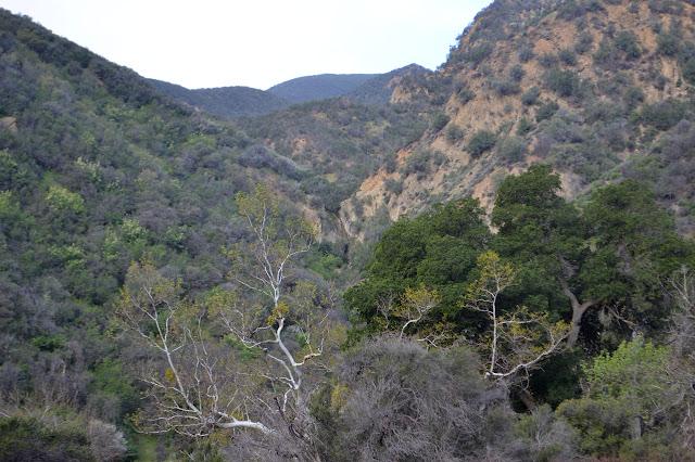 canyon side waterfall
