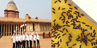 Bee-keeping-training-Rashtrapati-Bhavan