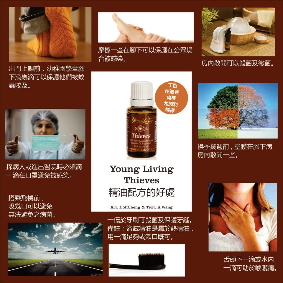 Mrs Fong Thieves Essential Oil 小偷精油