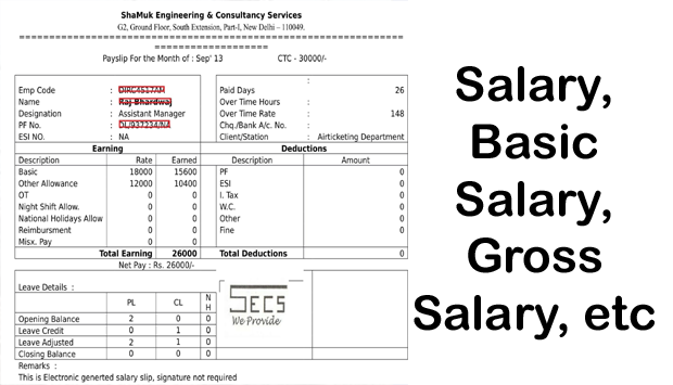 Basic Salary, Gross Salary, Net Salary, How To Calculate Salary