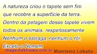 Dia dos Animais - Frases: Bichos de Estimação, Animais Selvagens