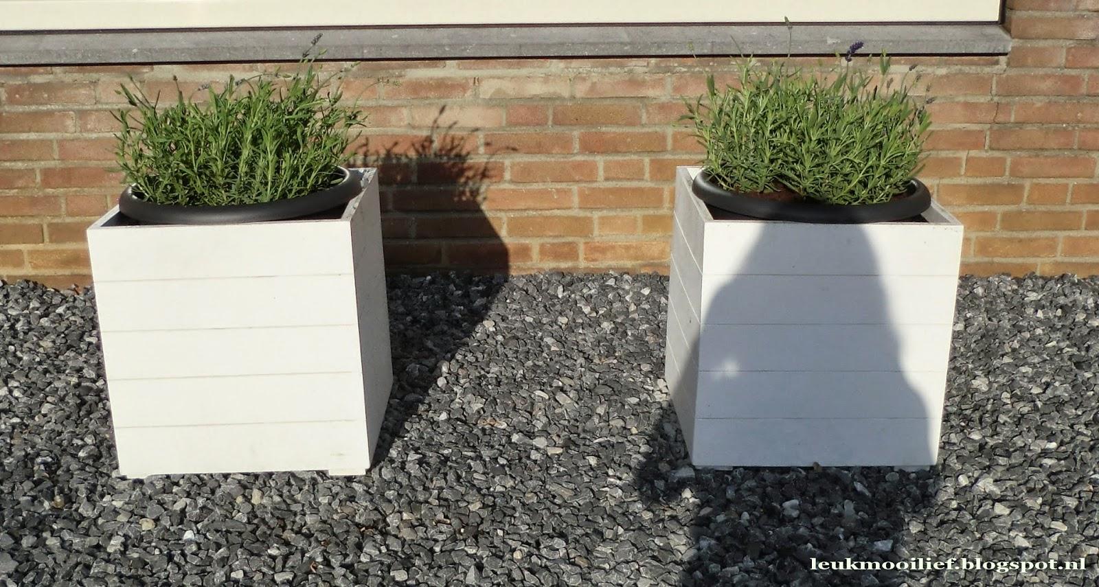 Verrijdbare Plantenbakken Voor Buiten.Goedkope Plantenbakken Buiten Rvs Bloembak Op Maat Bestellen