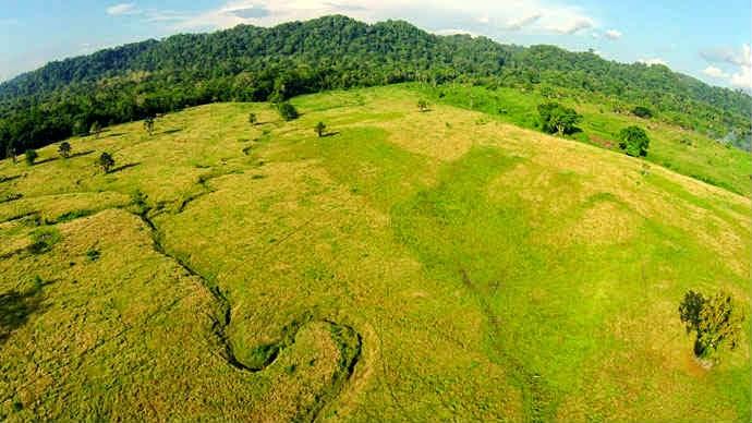 Taman Nasional Alar Purwo