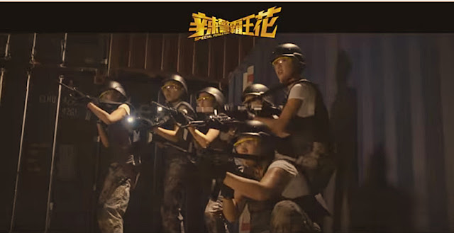 Sinopsis Film Hong Kong Special Female Force (2016)