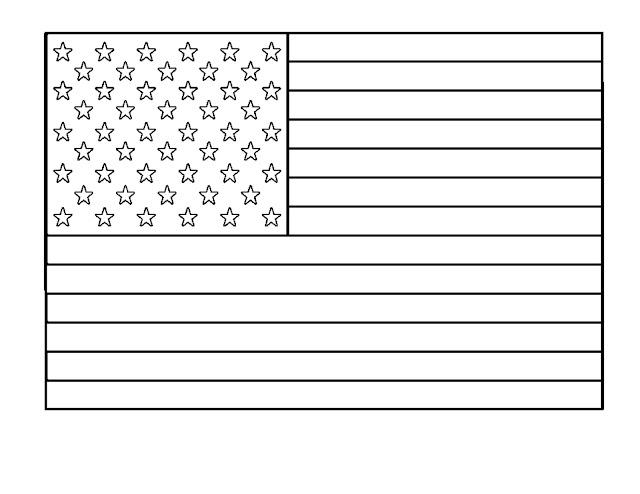 drapeau américain vierge