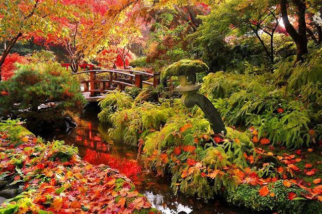 Outono em Victoria
