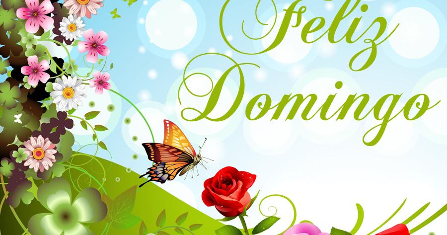 Imagens E Frases De Domingo: Unique Wallpaper: Feliz Domingo
