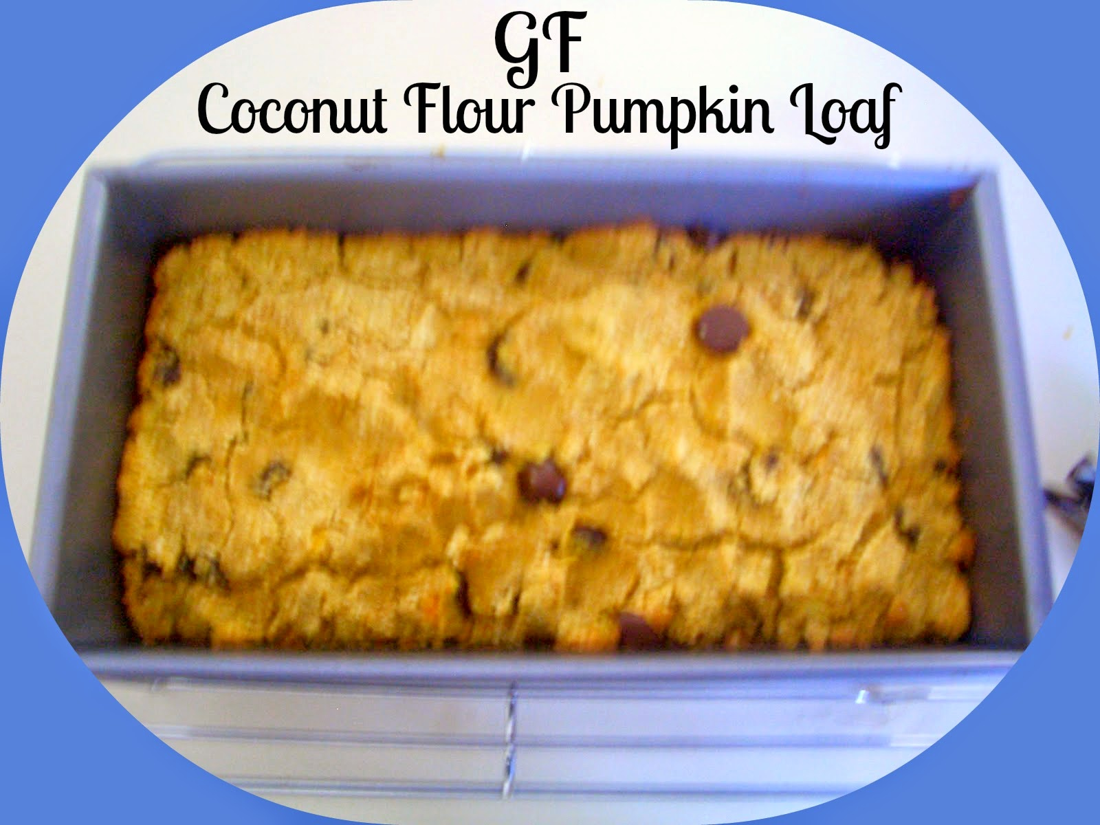 pumpkin chocolate chip loaf gluten free