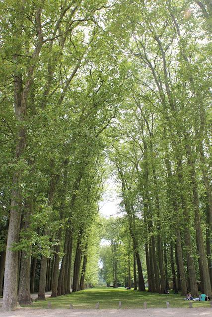法國巴黎凡爾賽宮花園-透視林蔭