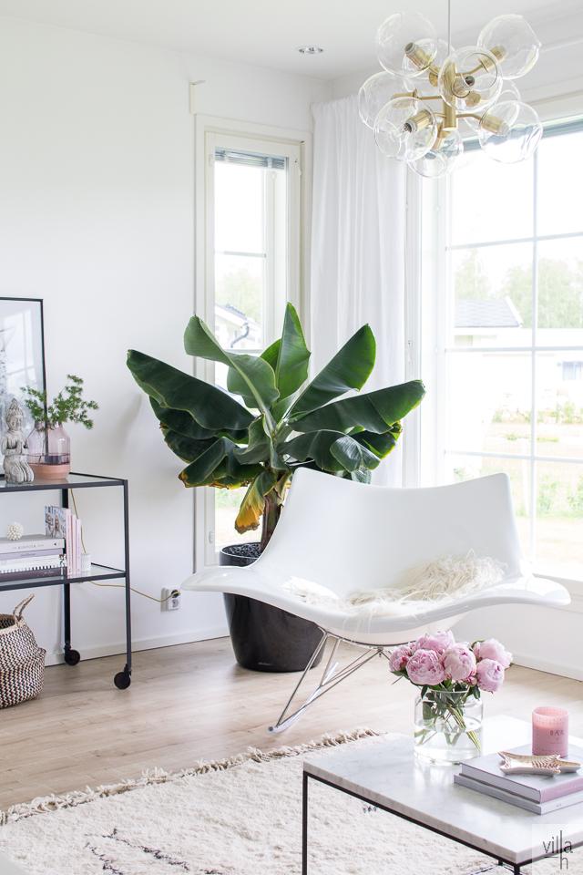 interior, olohuone, sisustus, banaanipuu