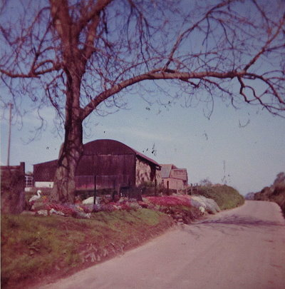 Well Manor Farm Cottages, Dutch Barn, Cowshed, 1960s, Flitney Family, Hook, Hampshire