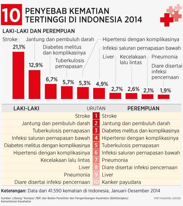 Halimah: Perubahan Pola Penyakit Stroke dan Angka Kematian di Indonesia