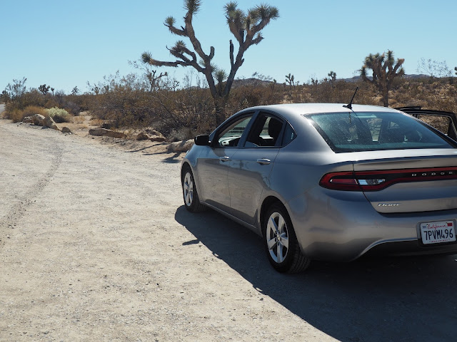 Car in Joshua Tree National Park, California