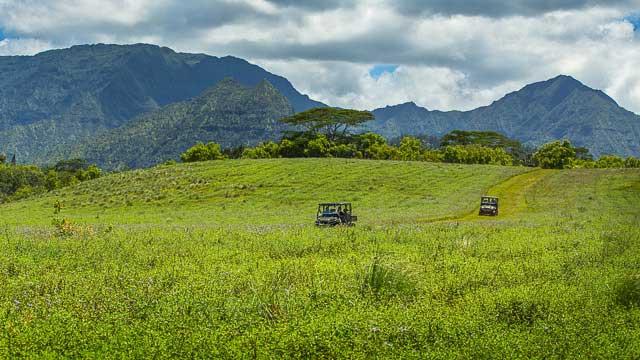 medleybyoanasinga.com-personal-blog-hawaii-vacation-kauai-island-off-road-adventure-princeville-ranch-11