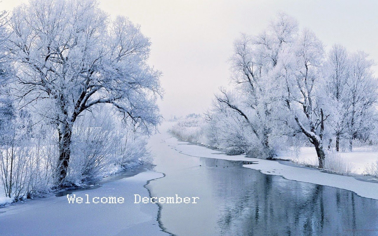 Welcome December 2014 Pics And Wallpapers ~ Snipping World!