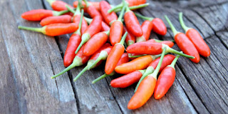 10 Manfaat Penting Cabai Rawit untuk Kesehatan